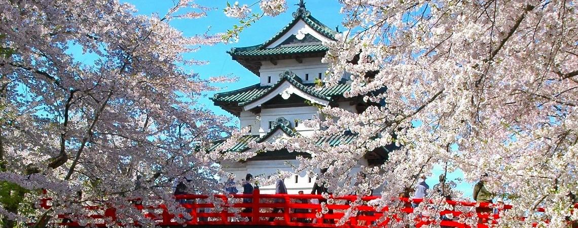 Aomori Festival-3